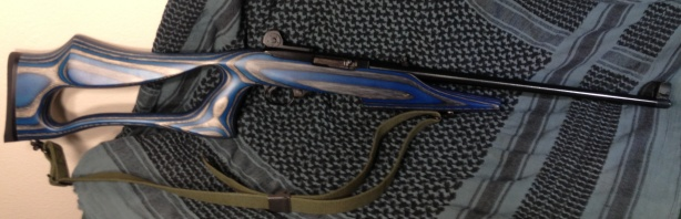 Ruger 10/22 with aftermarket stock